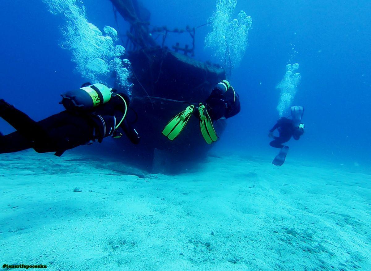 Potápění - první ponor s mořskými želvami